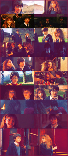 Harry and Hermione wallpaper entitled Harmony