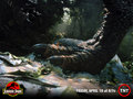 Jurassic Park fond d'écran
