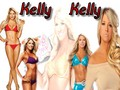 Kellywall2