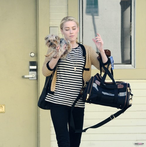 OUT IN LA WITH HER DOG (NOVEMBER 15TH)