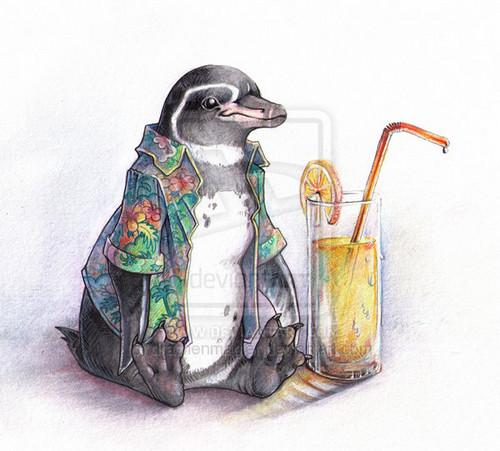 pingüino, pingüino de