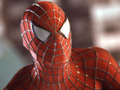 Spider-Man - spider-man photo
