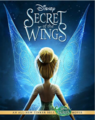 Tinker Bell: Secret of the Wings  - tinkerbell-and-the-mysterious-winter-woods photo