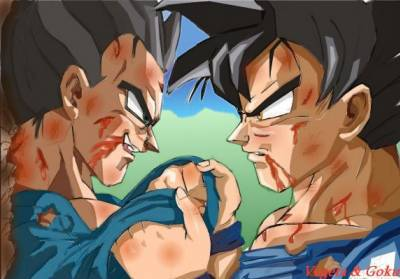 Goku And Vegeta   Dragon Ball Z Photo