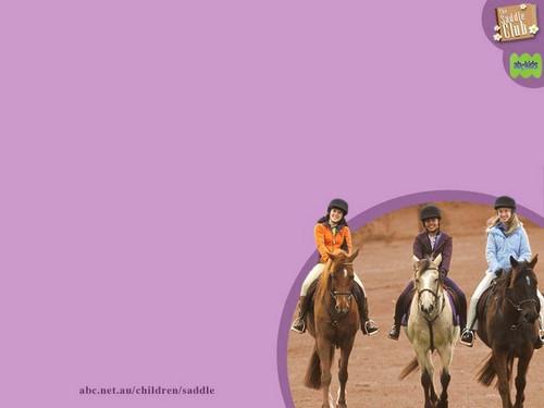 saddle2 800