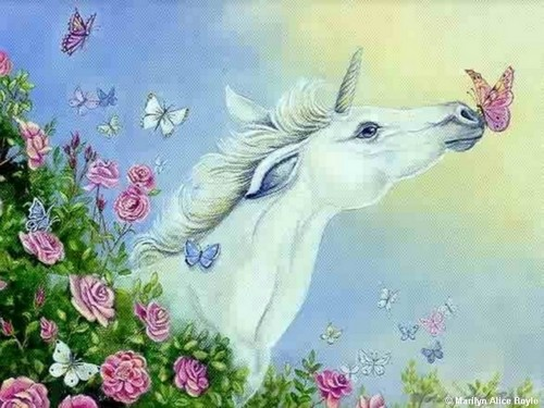 borboletas wallpaper titled unicorn and borboleta kiss