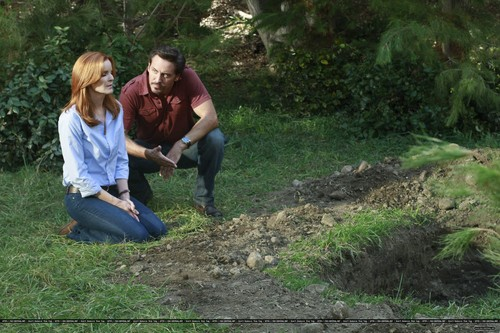 "Desperate Housewives wallpaper possibly with a mulch, a mahogany, and a sitka spruce entitled 8x07 ""Always in Control"""