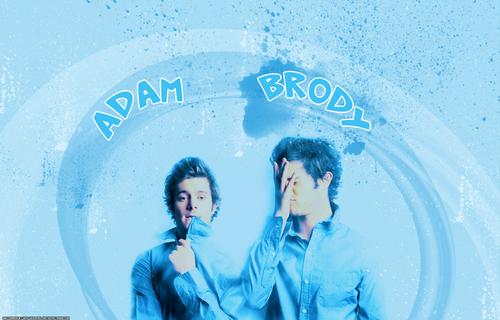 Adam Brody wallpaper titled AdamBrody!