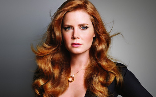 Amy Adams wallpaper probably containing a portrait entitled Amy Adams