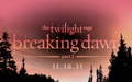 Breaking Dawn wallpapers - breaking-dawn-the-movie wallpaper