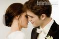 E&B Breaking Dawn - twilight-series photo