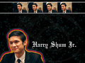 HarryShumJr! - harry-shum-jr wallpaper