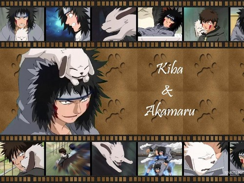kiba inuzuka karatasi la kupamba ukuta possibly with a stained glass window and anime entitled Kiba ♥ ♥ ♥