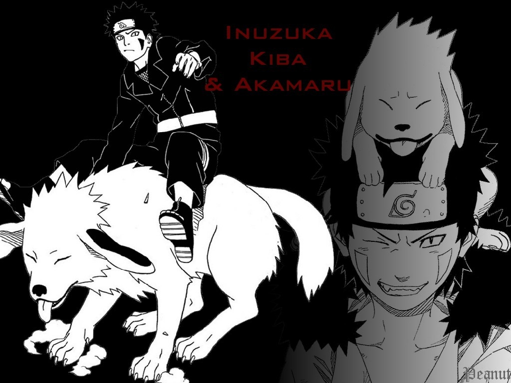Kiba Inuzuka and Akamaru | Naruto personagens que curto ...