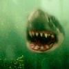 Human to shark  Harry Potter Wiki  FANDOM powered by Wikia