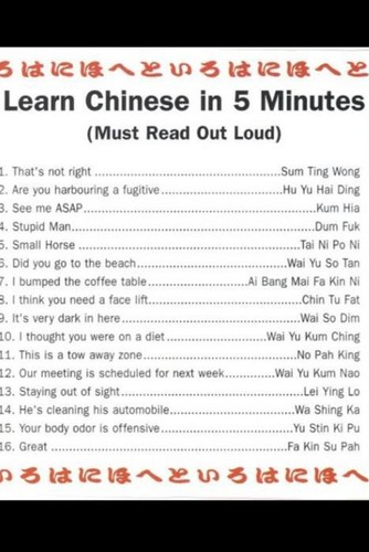 Learn Chinese In 5 Minutes!