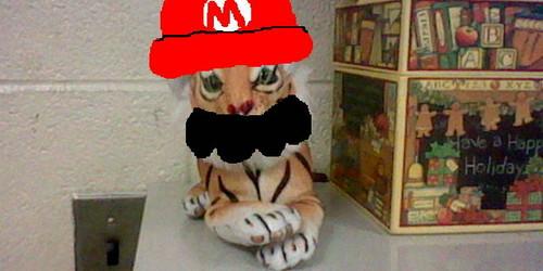Mario tiger