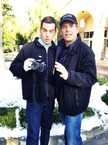 Michael Weatherly and Sean Murray