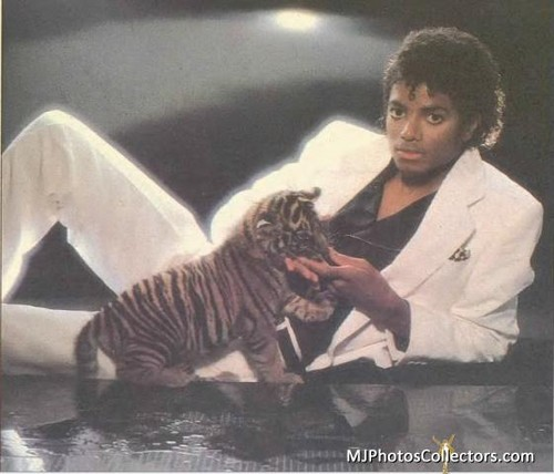 Michael and a cute little tiger