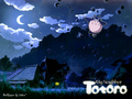 My Neighbor Totoro - studio-ghibli wallpaper