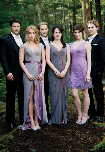 "Nikki Reed wallpaper containing a bridesmaid titled New ""Breaking Dawn - Part 1"" still of Nikki as Rosalie Hale"
