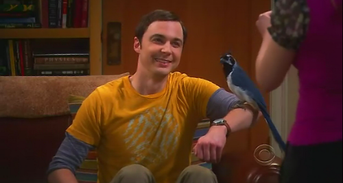 "Sheldon and the ""Lovey Dovey"""