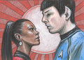 Star Trek PSC - Lovebirds - spock-and-uhura fan art