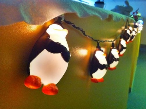 The Penguins as क्रिस्मस Lights!