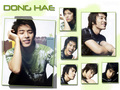 awesome!!!sooooo green! - lee-donghae wallpaper