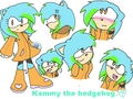 kammy the hedgehog... - sonic-girl-fan-characters fan art