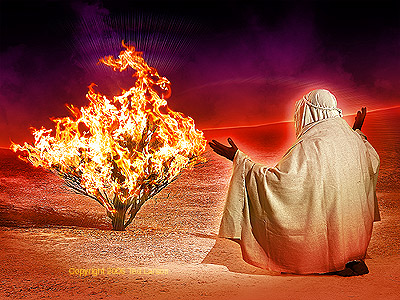 The Bible wallpaper entitled moses and the burning bush