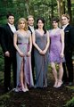 new cullen - twilight-series photo