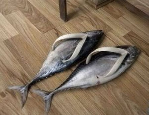 shoe designs fail