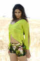 tanisha - bollywood-stars photo