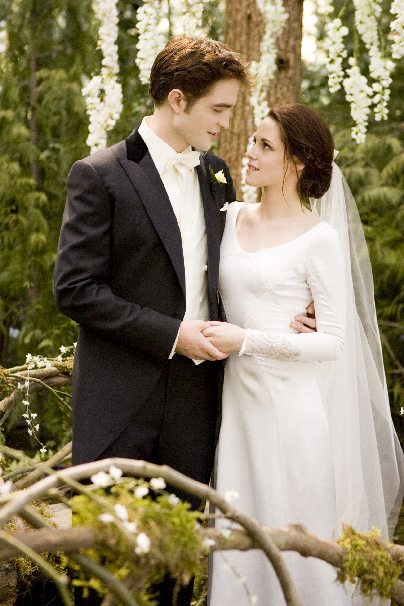 Breaking Dawn Stills