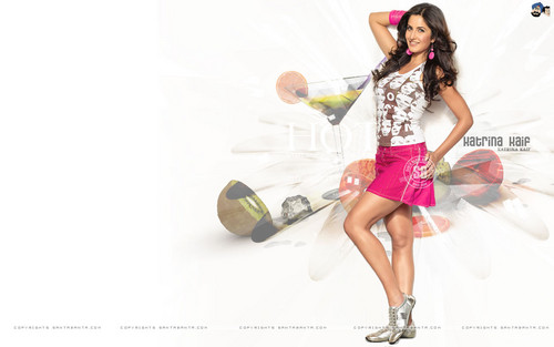 Katrina Kaif wallpaper entitled Cute Kat.