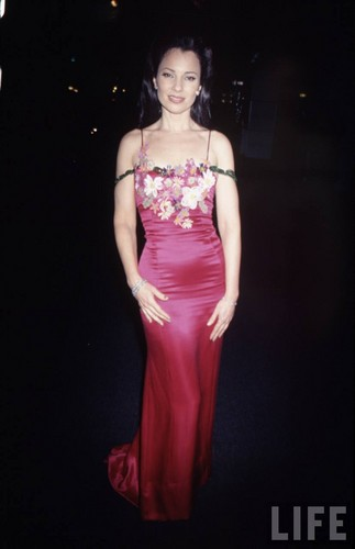 Fran Drescher Hintergrund containing a abendessen dress, a gown, and a bridesmaid called Fran