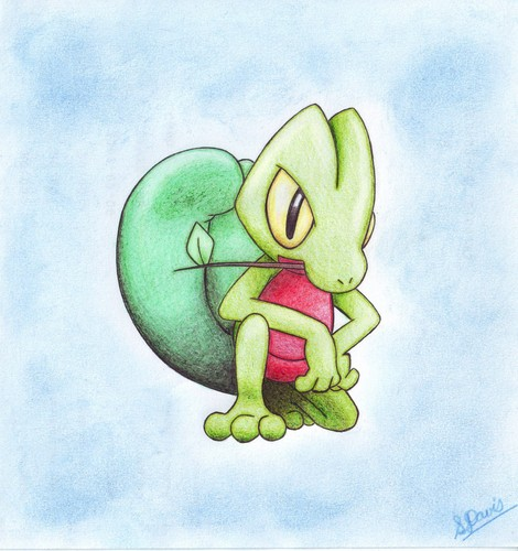 Holly's Pokemon
