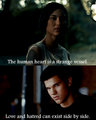 Jacob + Leah - jacob-black-and-leah-clearwater photo