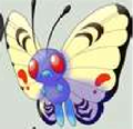 Mary &quot;Purple&quot; May's Pokemon - mariposa-region-rpg photo