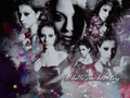 MichelleTrachtenberg! - michelle-trachtenberg wallpaper