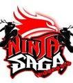 N_S_I - ninja-saga photo