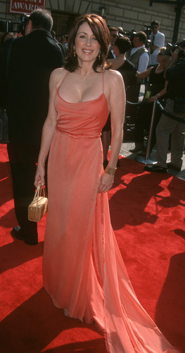 patricia heaton fondo de pantalla with a cena dress and a vestido titled Patricia Heaton