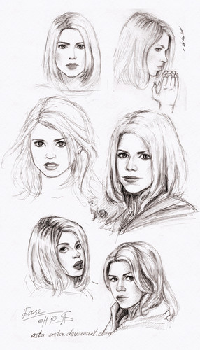 Rose Tyler wallpaper entitled Rose sketches