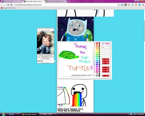 Thomas the turdmuffin tur-tle c: