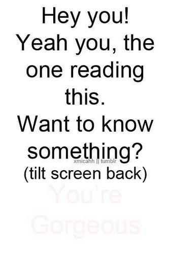 Tilt Screen Back