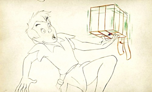 Walt Disney Sketches - Peter Pan