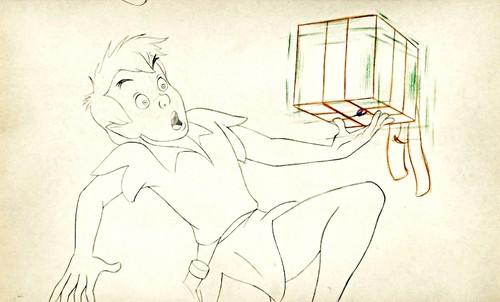 Walt डिज़्नी Sketches - Peter Pan