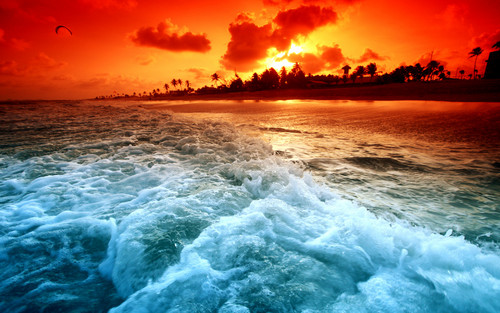 immagini bellissime wallpaper possibly with a sunset and a spiaggia entitled beautiful ocean