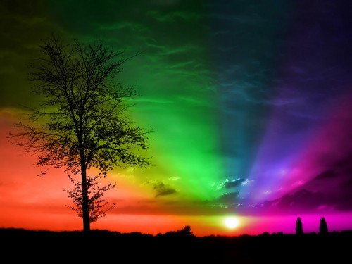 rainbow background - colors Photo